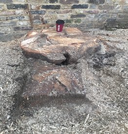 Essex Tree Stump Grinding London.